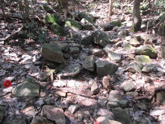 IMG9442JPG大雨で傷んだ登山道が続く