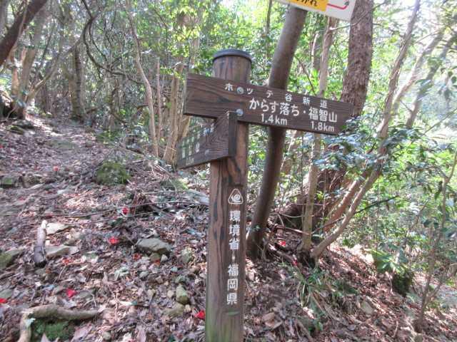 IMG9469JPG自然歩道に合流