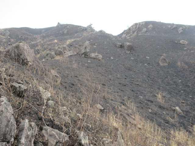 IMG9585JPG4月5日山火事で黒い山肌