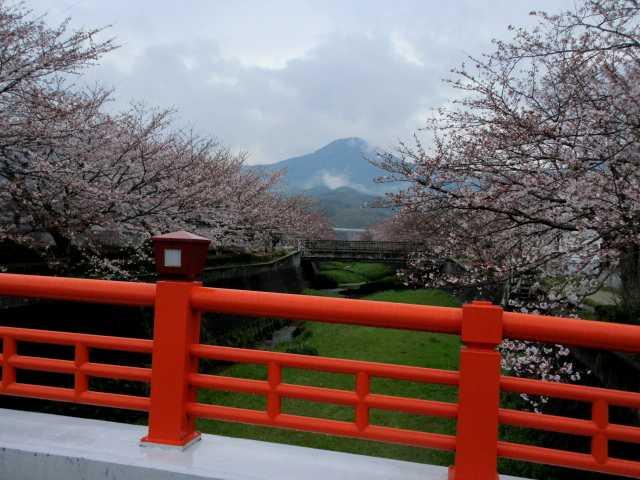 IMG9502JPG花曇りの貫山