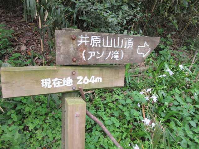IMG0266JPGアンの滝コースで