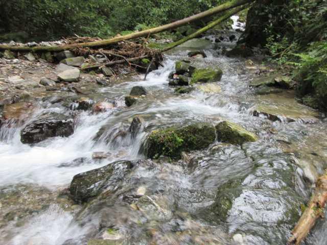 IMG0304JPG水量の多い渡渉