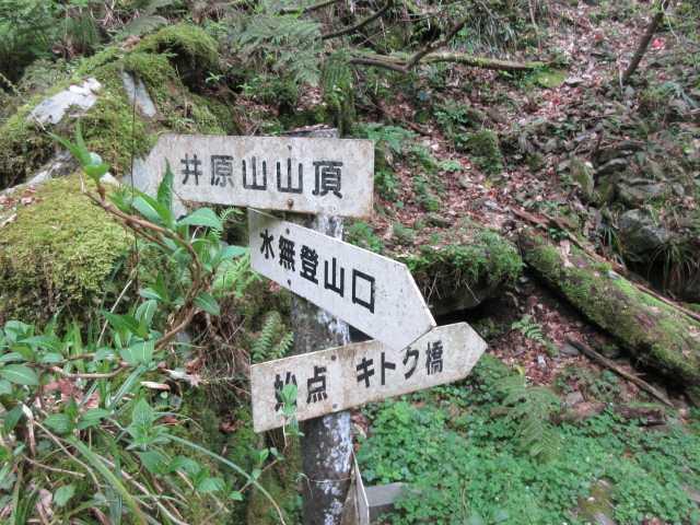 IMG0352JPG井原山山頂に向かう