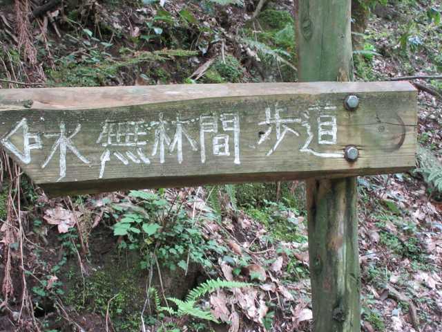 IMG0475JPG水無林間歩道