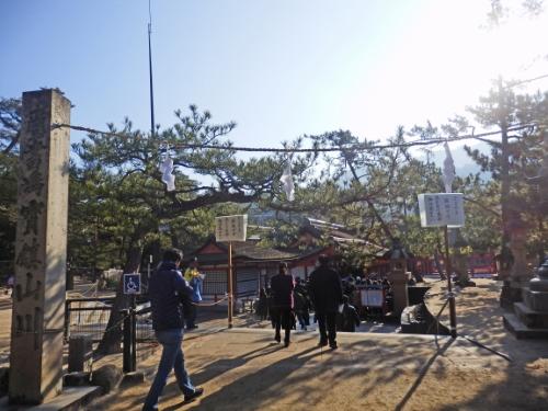1.3厳島神社 (22)_resized