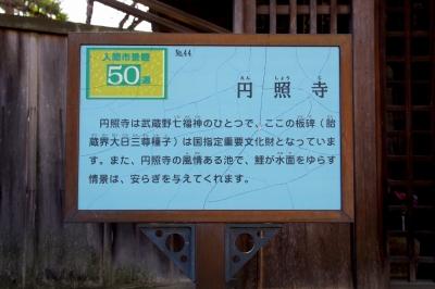 ☆IMGP5004