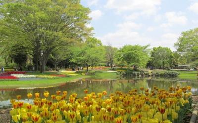 昭和記念公園9