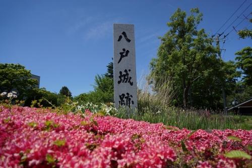 1八戸城 (1200x800)