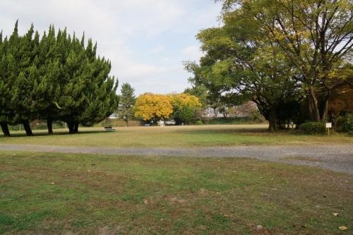 2.5公園 (1200x800)