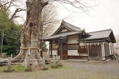 2拝殿 (1200x800)