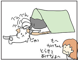 tataku4-2.jpg