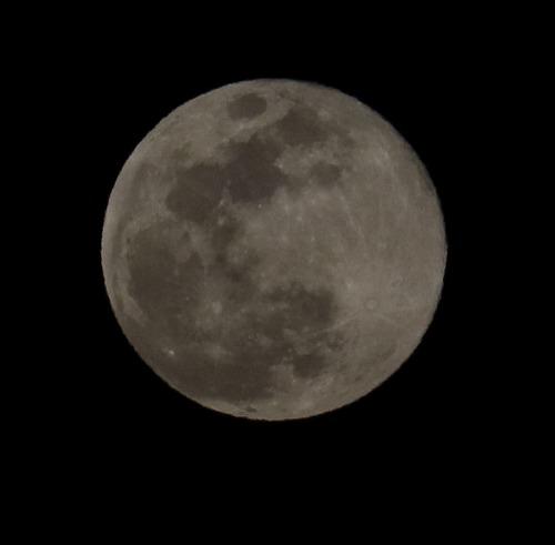お月様 2