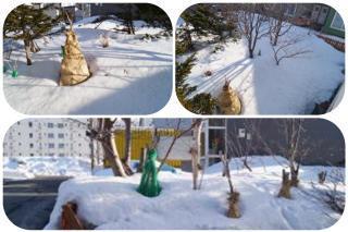 雪解け8-2