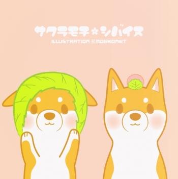 柴犬イラスト桜餅