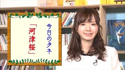 170213朝ダネ 紺野あさ美 (1)