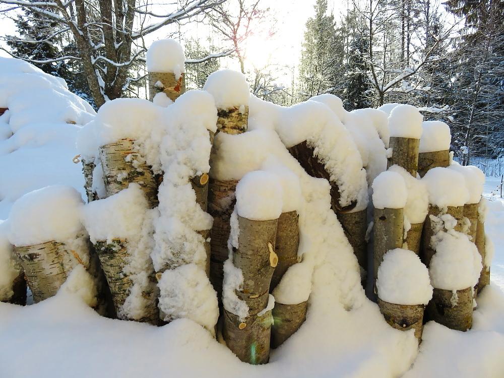 フィンランド 2月雪景色 薪