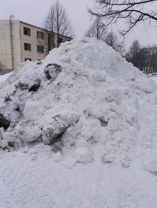 フィンランド 冬 歩道 雪山