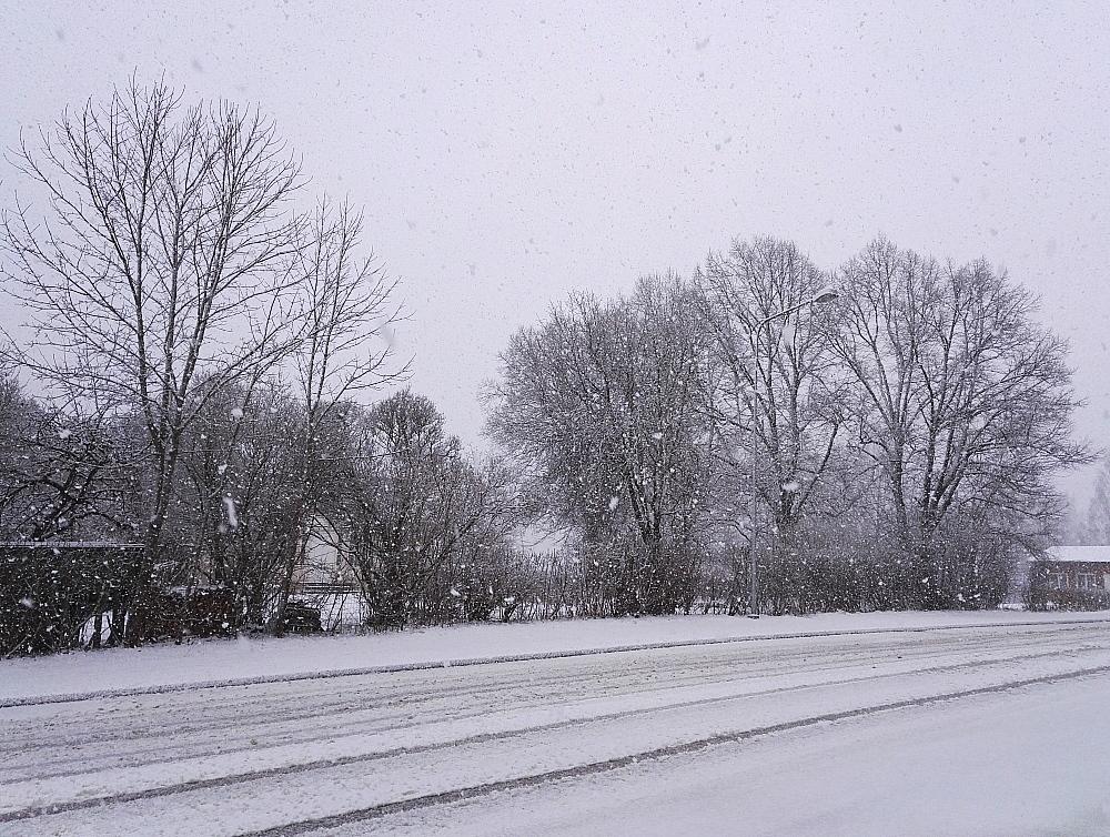 フィンランド南部 4月25日 雪 Finland Spring Snow