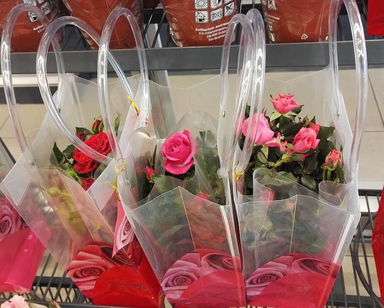 フィンランド ヴァレンタイン 花 友達の日