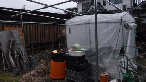 2017.2.120菜園