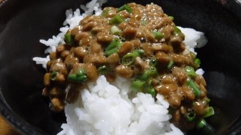 2017.4.2朝食2