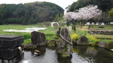 2017.4.9桜9