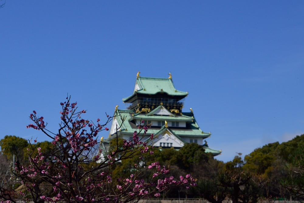 大阪城DSC_6857