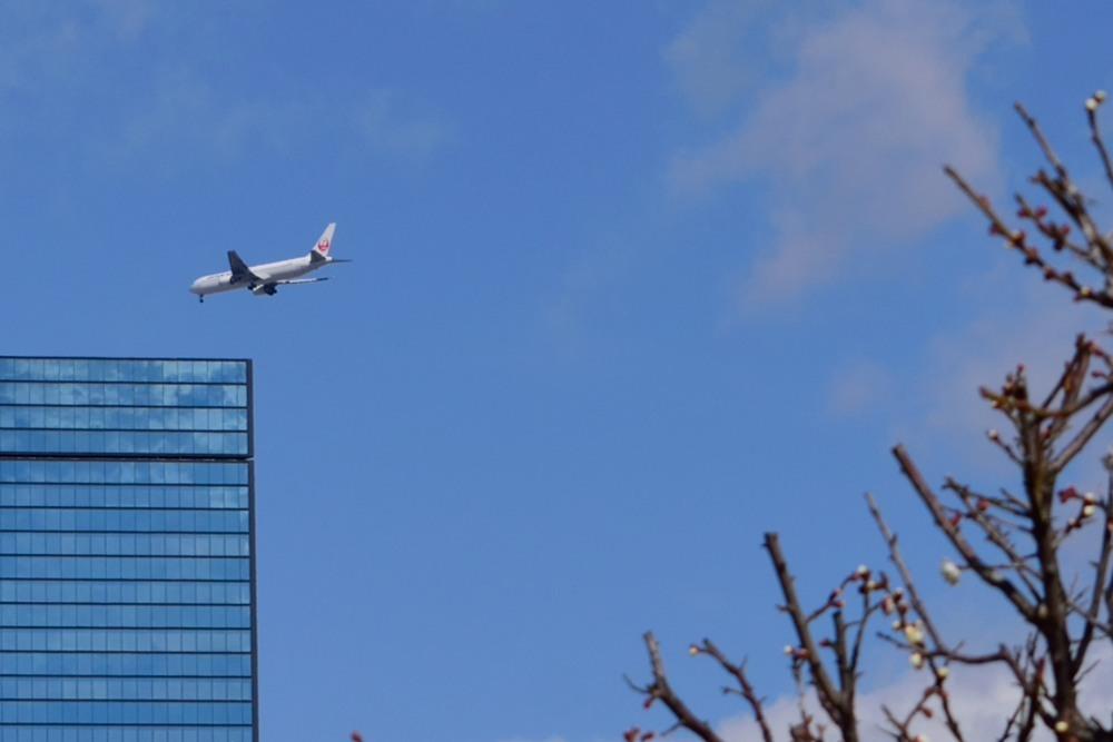 飛行機DSC_6874