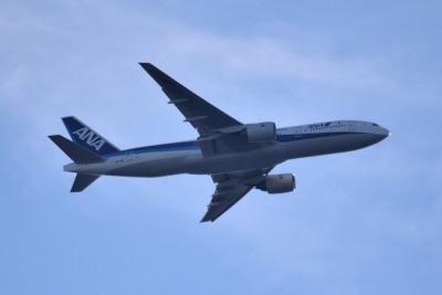 飛行機DSC_8181