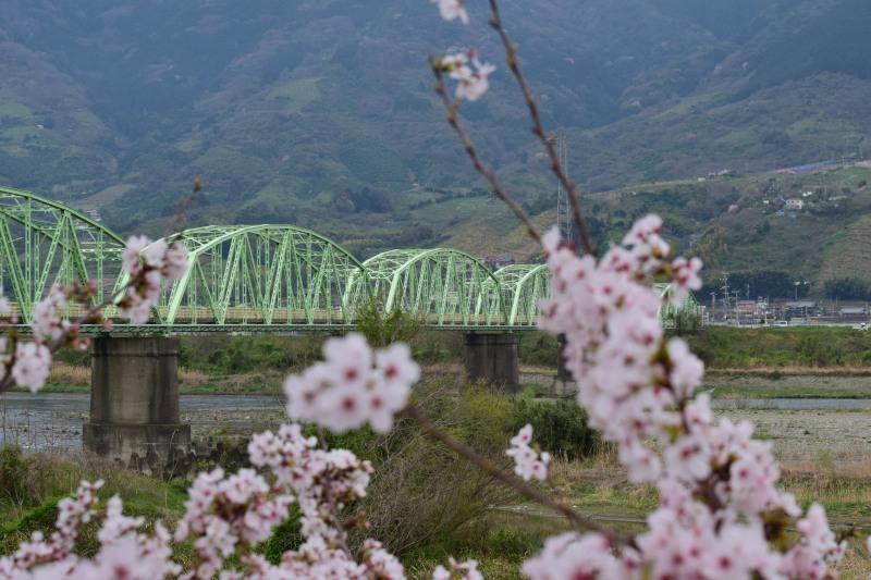 竜門橋DSC_1399