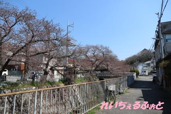 DPP_12828.jpg