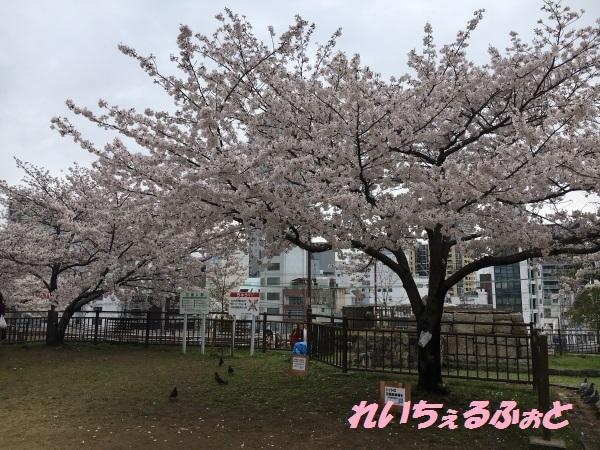 DPP_12858.jpg