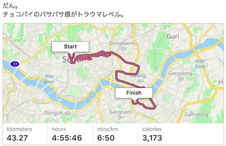 2017 Seoul Marathon