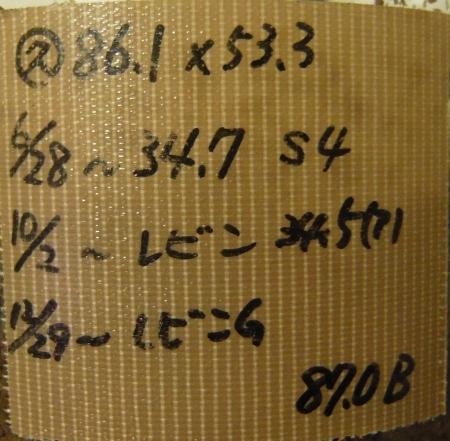 P1040594 (450x441)