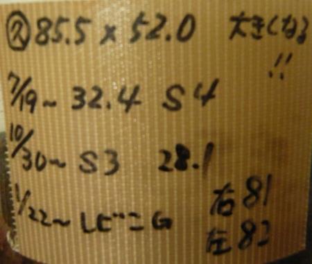 P1040596 (450x381)