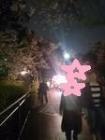 洗足池夜桜4の2
