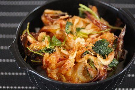桜海老のかき揚げ丼弁当