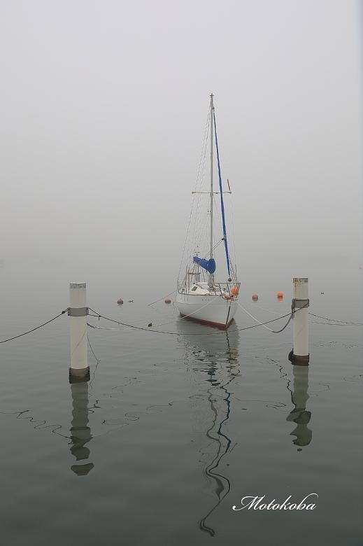 2017(0450)