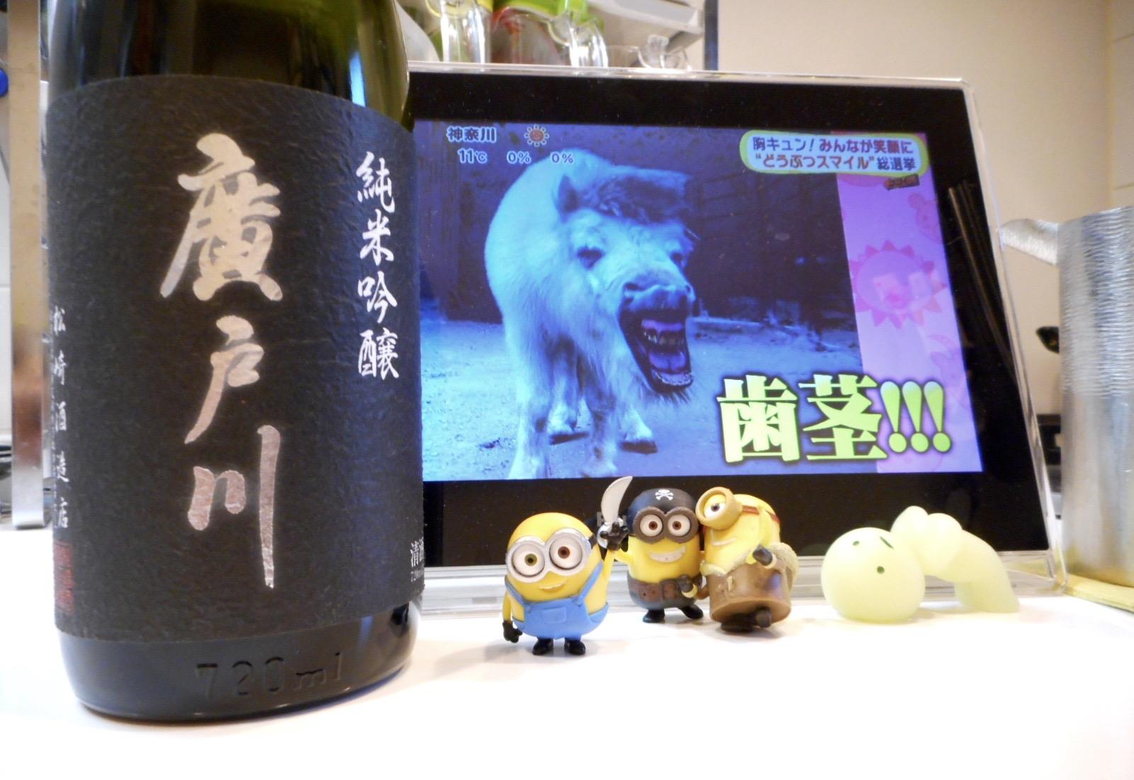 hirotogawa_jungin_nama28by1.jpg