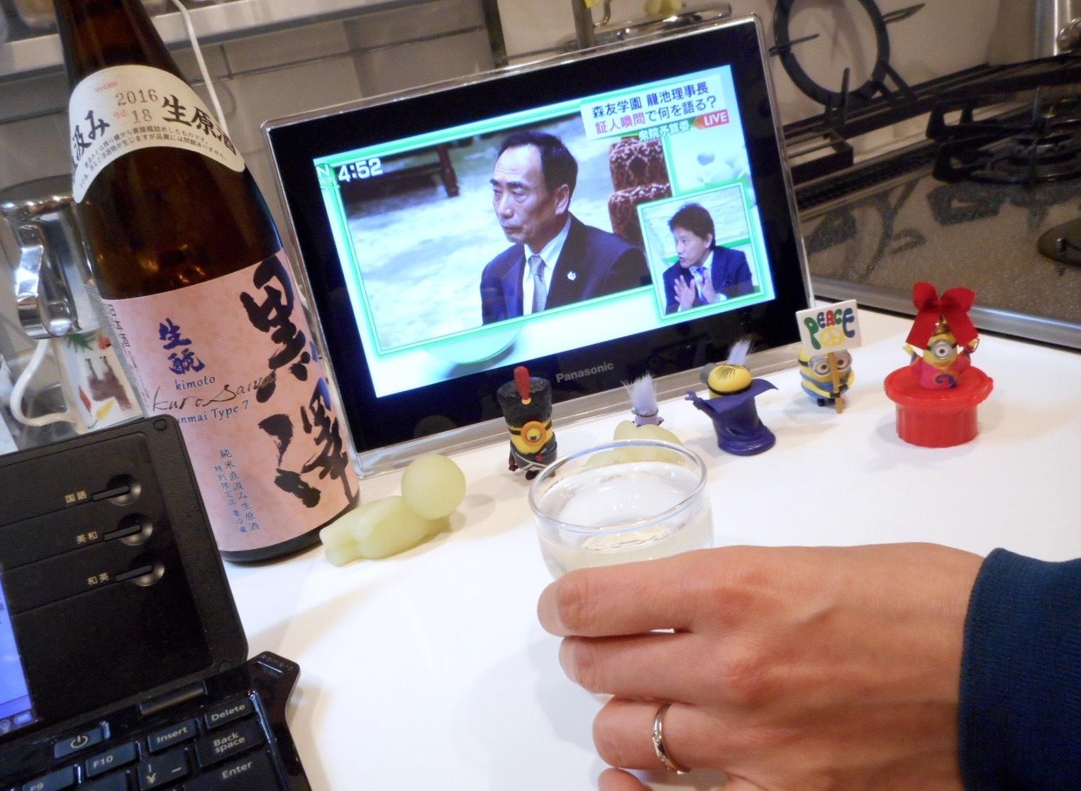 kurosawa_type7_28by8.jpg