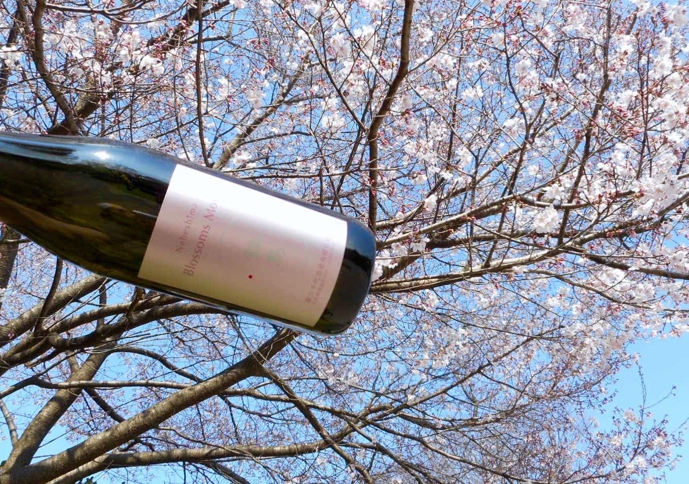 nabeshima_blossom28by1.jpg