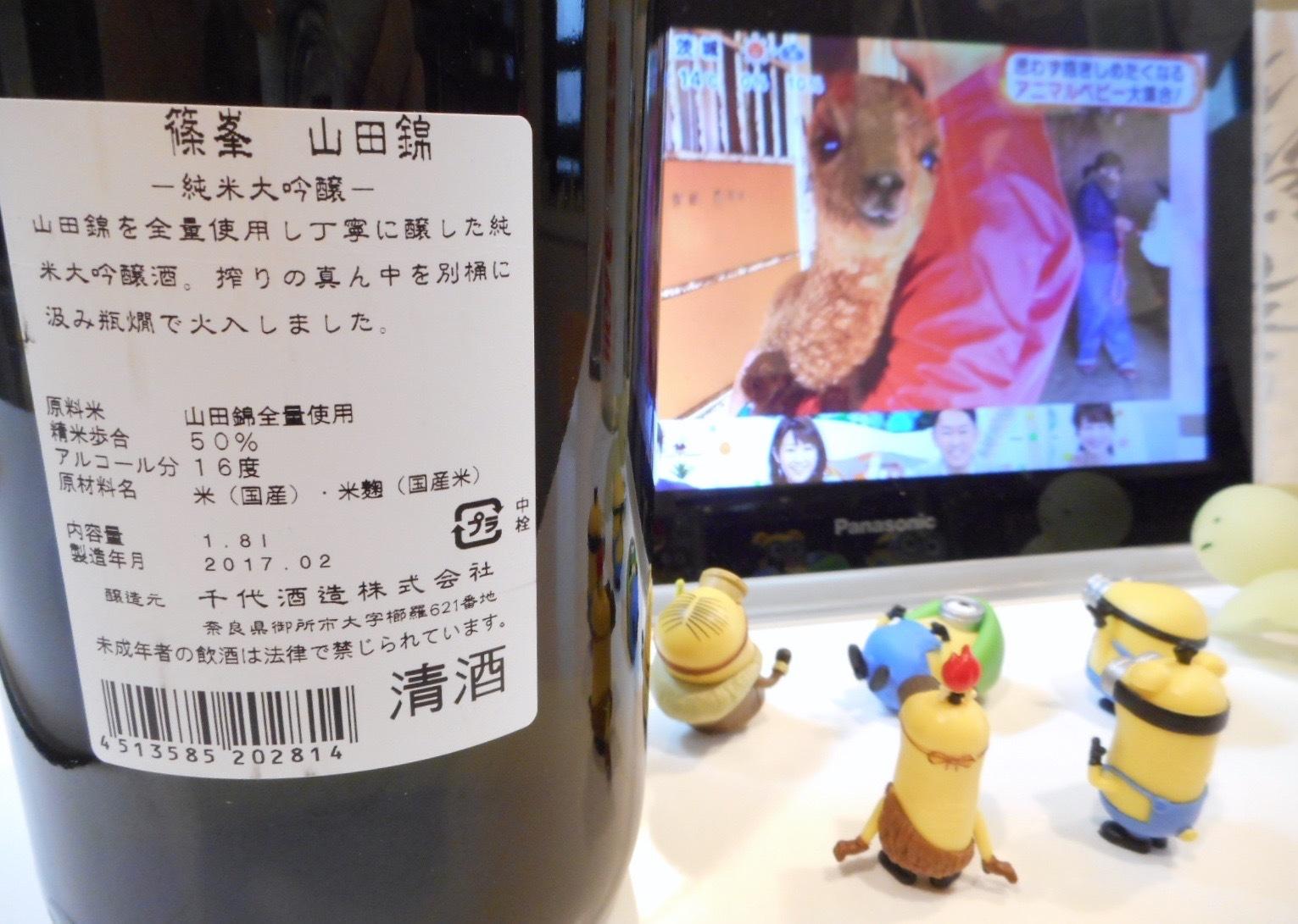 shinomine_jundai_yamada26by2.jpg