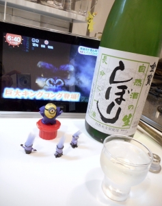 sizenshu_namashibori28by4.jpg