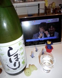 sizenshu_namashibori28by5.jpg