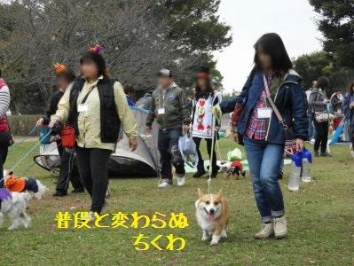 17DSCN1192.jpg