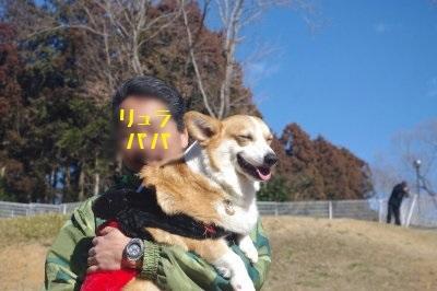 22ちくわIMGP6504