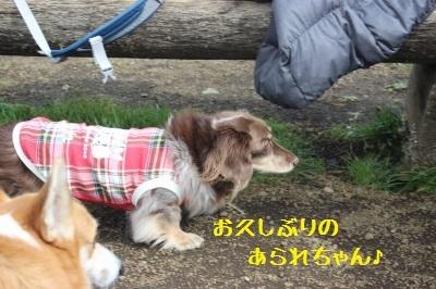 3IMG_6908.jpg