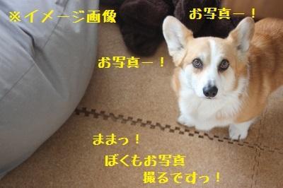 5IMG_5998.jpg