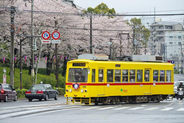 170409asukayama7001-2.jpg