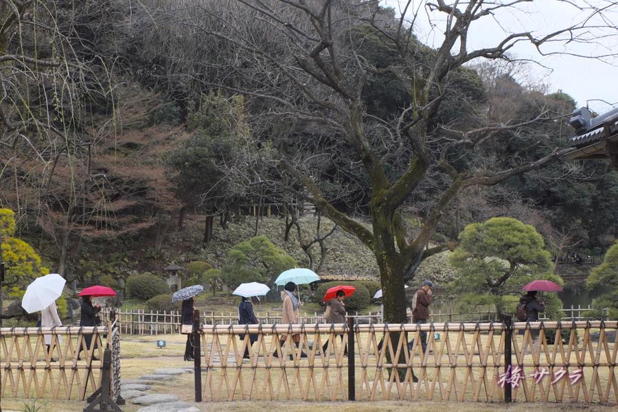 細川庭園6変更済